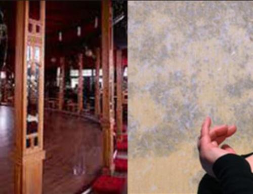 Week-end du 17 au 20 janvier : ateliers danse, théâtre avec Annie Pican et Karine Saporta; cinéma avec Thomas Aufort, chanson cabaret avec «Les Dénicheurs»et bal