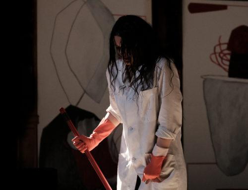L'Immaculée – spectacle de Karine Saporta au Dansoir