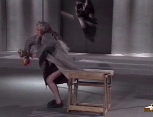 LDWTV –  La fiancée aux yeux de bois, spectacle chorégraphique de Karine Saporta