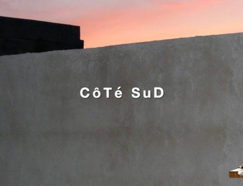 LDWTV – Actualités artistiques du sud, par Georges Cazenove