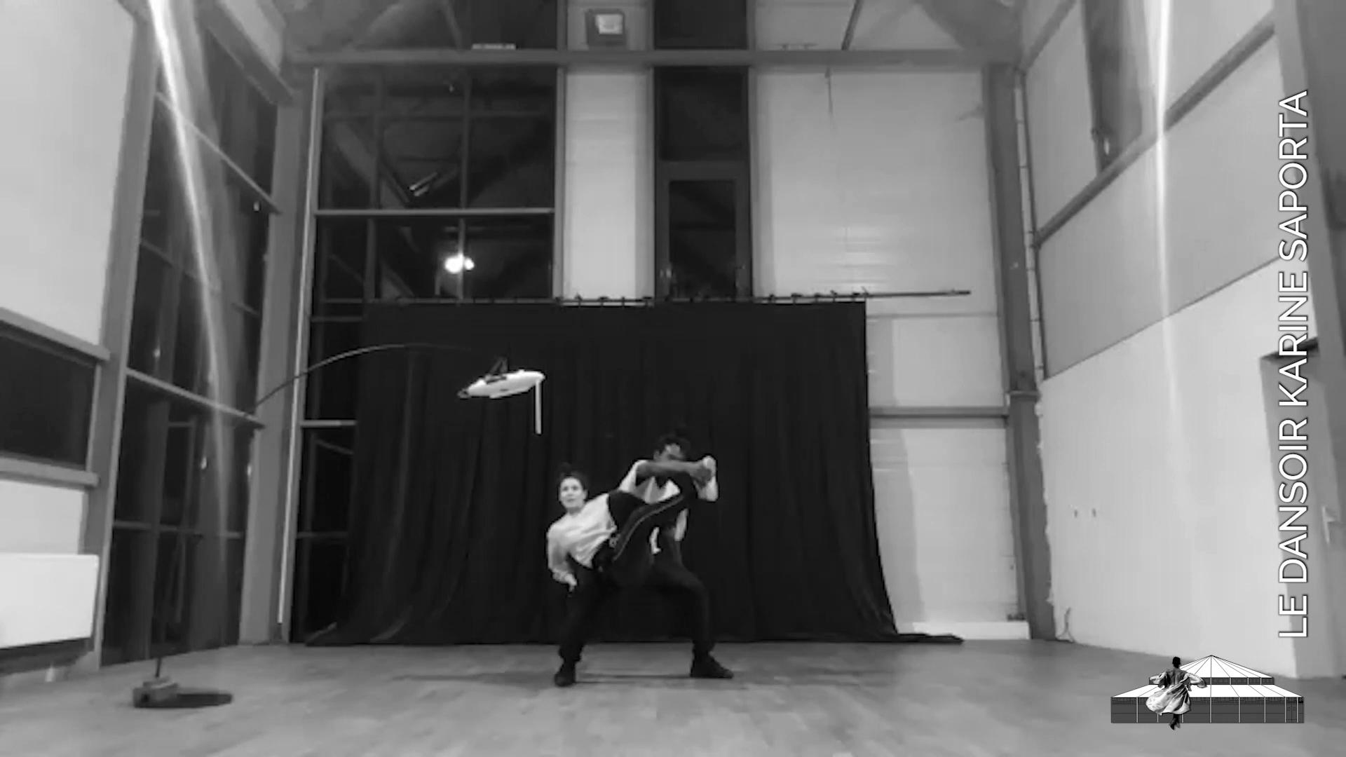 """LDWTV - V&F cie.  présente son duo """"Contact"""", crée grâce à un instrument de musique : le thérémine"""